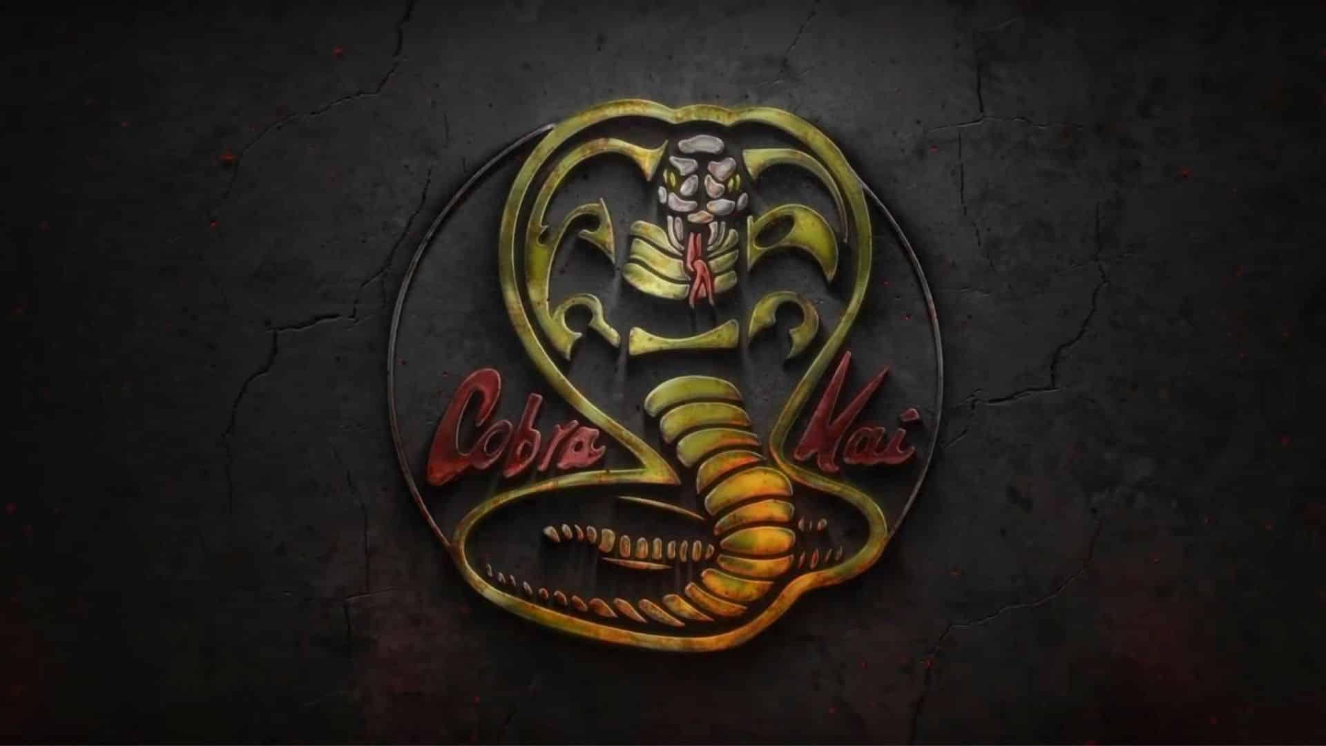 Quand sortira la saison 3 de Cobra Kai de Netflix ? 37